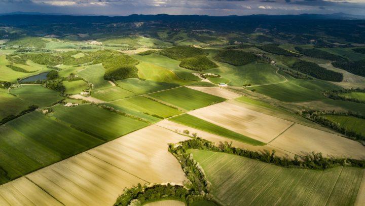 #ChiantiTesi, seconda edizione per la valorizzazione del territorio