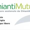 Il modello ChiantiMutua